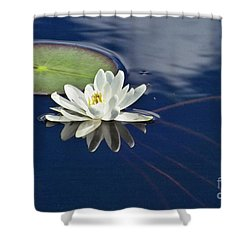 White Water Lily Shower Curtain by Heiko Koehrer-Wagner