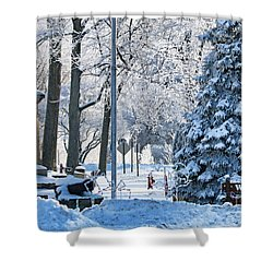 Whitehouse Village Park  7360 Shower Curtain by Jack Schultz
