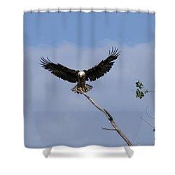 Wide Open Shower Curtain by Lori Tordsen