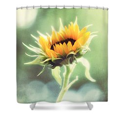 Wild And Free Shower Curtain by Amy Tyler