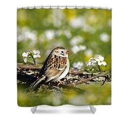 Wild Birds - Field Sparrow Shower Curtain by Christina Rollo