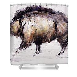 Wild Boar Shower Curtain by Mark Adlington