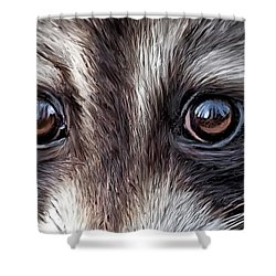 Wild Eyes - Raccoon Shower Curtain by Carol Cavalaris