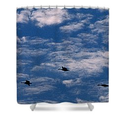 Wild Goose Heaven Shower Curtain by Skip Willits