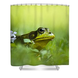 Wild Green Frog Shower Curtain by Christina Rollo