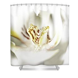 Wild Orchid Shower Curtain by Erik Brede