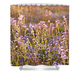 Wildflower Dusk Shower Curtain by Anne Gilbert