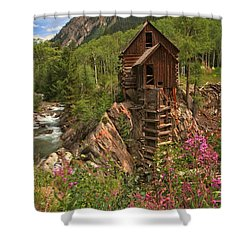 Wildflowers Along The Crystal Shower Curtain by Adam Jewell