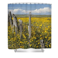 Wildflowers Surround Rustic Barb Wire Shower Curtain by David Ponton