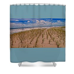 Wildwood Beach Breezes  Shower Curtain by David Dehner