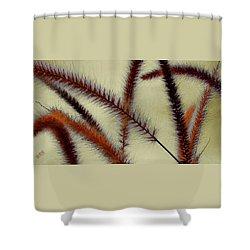 Wind Shower Curtain by Ben and Raisa Gertsberg