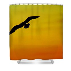 Wind Beneath My Wings Shower Curtain by Frozen in Time Fine Art Photography