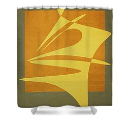 Window Dressing Shower Curtain by Richard Rizzo