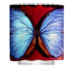 Wings Of Nature Shower Curtain by Karen Wiles