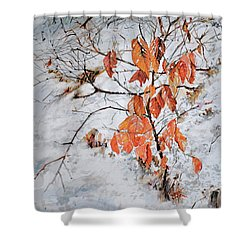Winter Ash Shower Curtain by P Anthony Visco