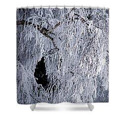 Winter Blanket Shower Curtain by Sharon Elliott