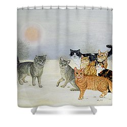 Winter Cats Shower Curtain by Ditz