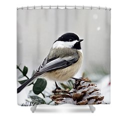Winter Chickadee Shower Curtain by Christina Rollo