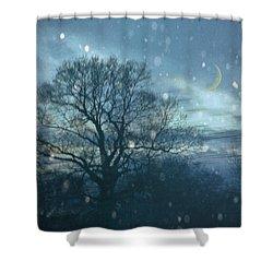 Winter Evening Shower Curtain by Jan Bickerton