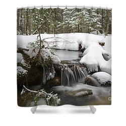 Winter Forest - Lincoln New Hampshire Usa Shower Curtain by Erin Paul Donovan