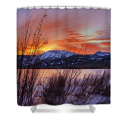 Winter Glow Shower Curtain by Dianne Phelps