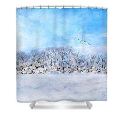 Winter Landscape Shower Curtain by Darren Fisher