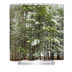 Winter Landscapes Shower Curtain by Lanjee Chee