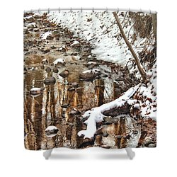 Winter - Natures Harmony Shower Curtain by Mike Savad
