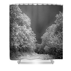 Winter Road Shower Curtain by John Haldane