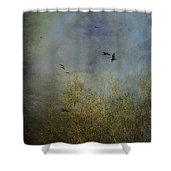 Winter Song Shower Curtain by Diane Schuster