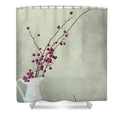 Winter Still Life Shower Curtain by Priska Wettstein