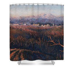 Winter Sunset In Brianza Shower Curtain by Marco Busoni