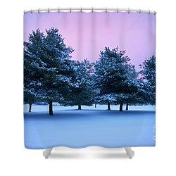 Winter Trees Shower Curtain by Brian Jannsen