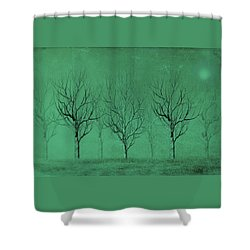 Winter Trees In The Mist Shower Curtain by David Dehner
