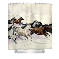 Winter Wishperer Shower Curtain by Melly Terpening