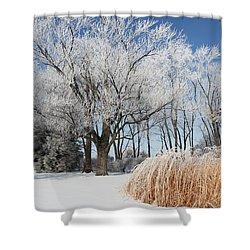 Winter Wonderland Shower Curtain by Robyn Saunders