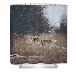 Winter Wonders Shower Curtain by Carrie Ann Grippo-Pike
