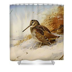 Winter Woodcock Shower Curtain by Mountain Dreams