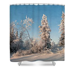 Wintery Shower Curtain by Priska Wettstein