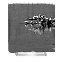 Wisconsin River Shower Curtain by Steven Ralser