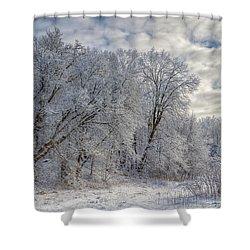 Wisconsin Winter Shower Curtain by Joan Carroll