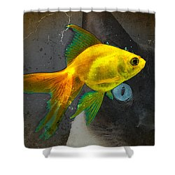 Wishful Thinking - Cat And Fish Art By Sharon Cummings Shower Curtain by Sharon Cummings