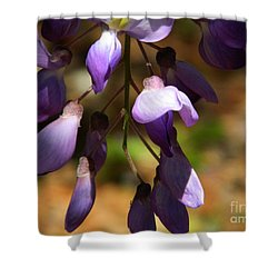 Wisteria 2 Shower Curtain by Andrea Anderegg