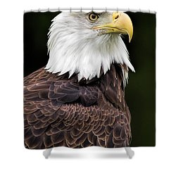 With Dignity Shower Curtain by Dale Kincaid