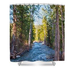 Wolf Creek Flowing Downstream  Shower Curtain by Omaste Witkowski