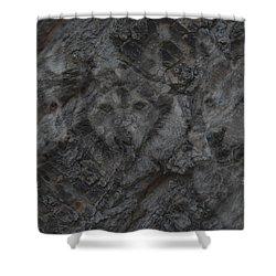 Wolf Shadows Shower Curtain by Ernie Echols
