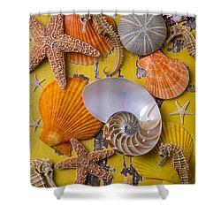 Wonderful Sea Life Shower Curtain by Garry Gay