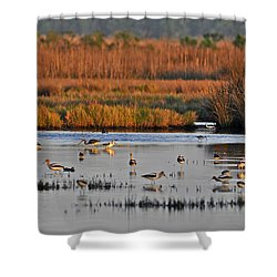 Wonderful Wetlands Shower Curtain by Al Powell Photography USA