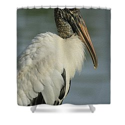 Wood Stork In Oil Shower Curtain by Deborah Benoit