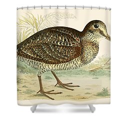 Woodcock Shower Curtain by Beverley R Morris